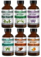 Top Essential Oil Gift Set - Best 6 Aromatherapy Oil - Eucalyptus, Lavender, Tea Tree, Peppermint, Orange, Cinnamon 1 oz ea