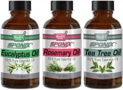 Top Essential Oil Gift Set - Best 3 Aromatherapy Oil - Eucalyptus, Rosemary, Tea Tree - Therapeutic Grade and Premium Quality -