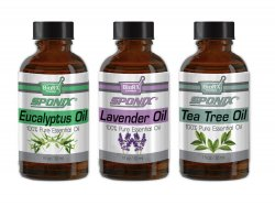 Sponix 3-Pack Essential Oils Set - (Eucalyptus, Lavender, Tea Tree) - 1 OZ